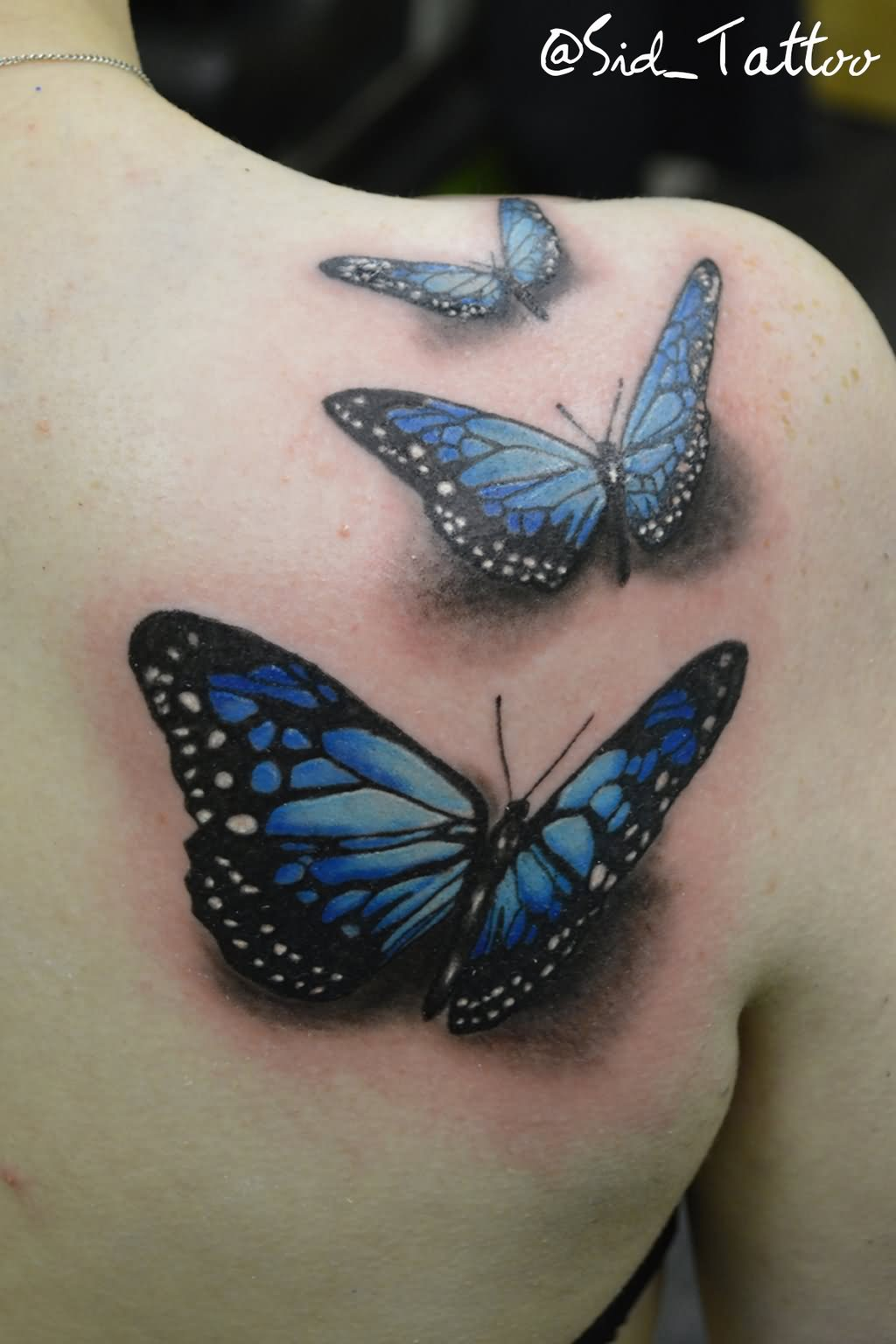 3D Three Butterflies Tattoo On Right Back Shoulder By Thomas Sidney Birchall