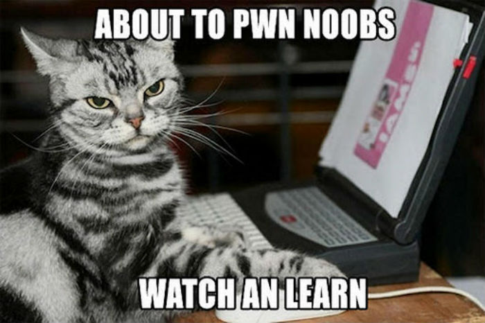 how to learn for the noob 110