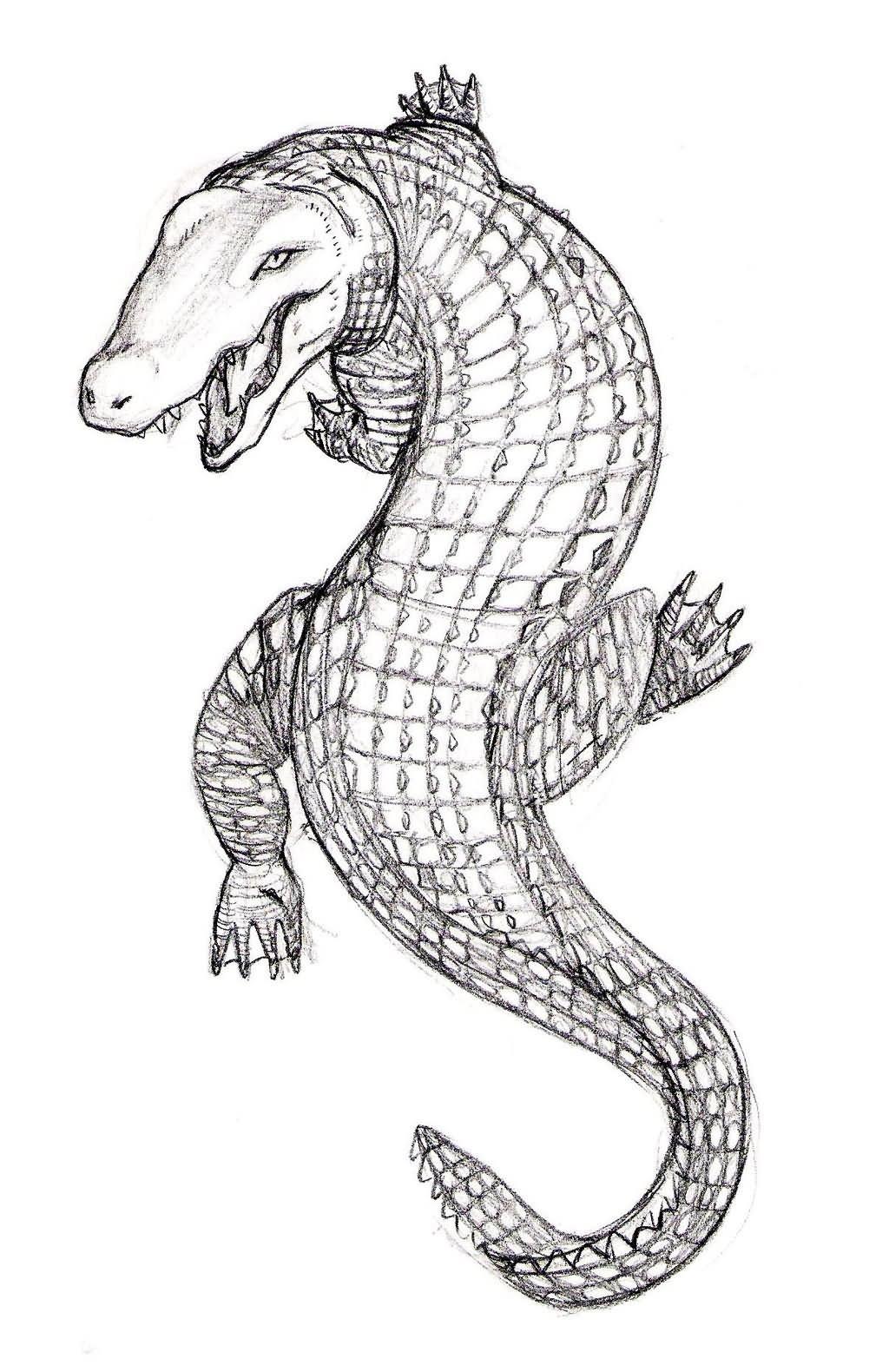 8faacd7c6a1462 Amazing Alligator Tattoo Design By Jim Cacciabando Jr