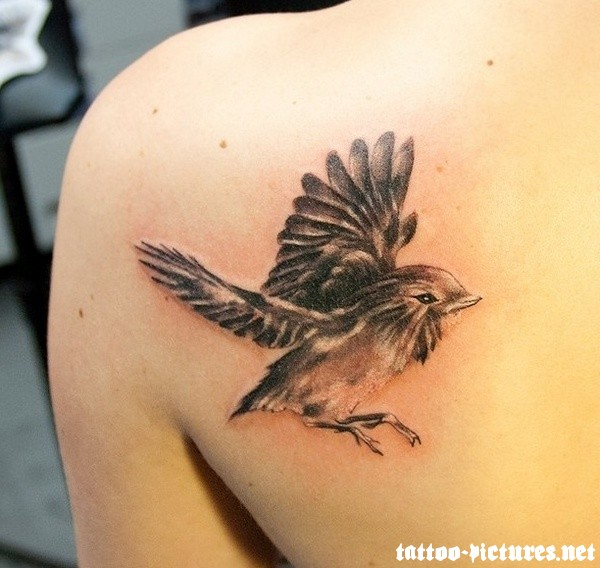 heart means everything bird tattoo on back shoulder. Black Bedroom Furniture Sets. Home Design Ideas