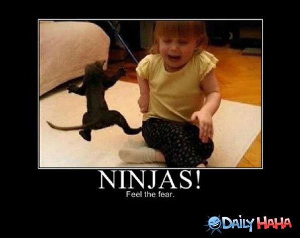 40 Very Funny Ninja Pictures And Photos
