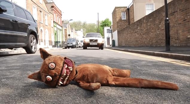 Image result for roadkill cat