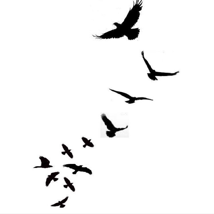 flying bird template printable - 38 unique birds tattoos designs