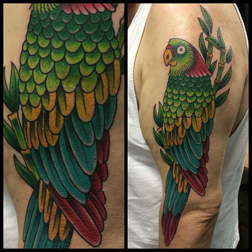 73c91f75b8479 Traditional Parrot Tattoo On Man Half Sleeve