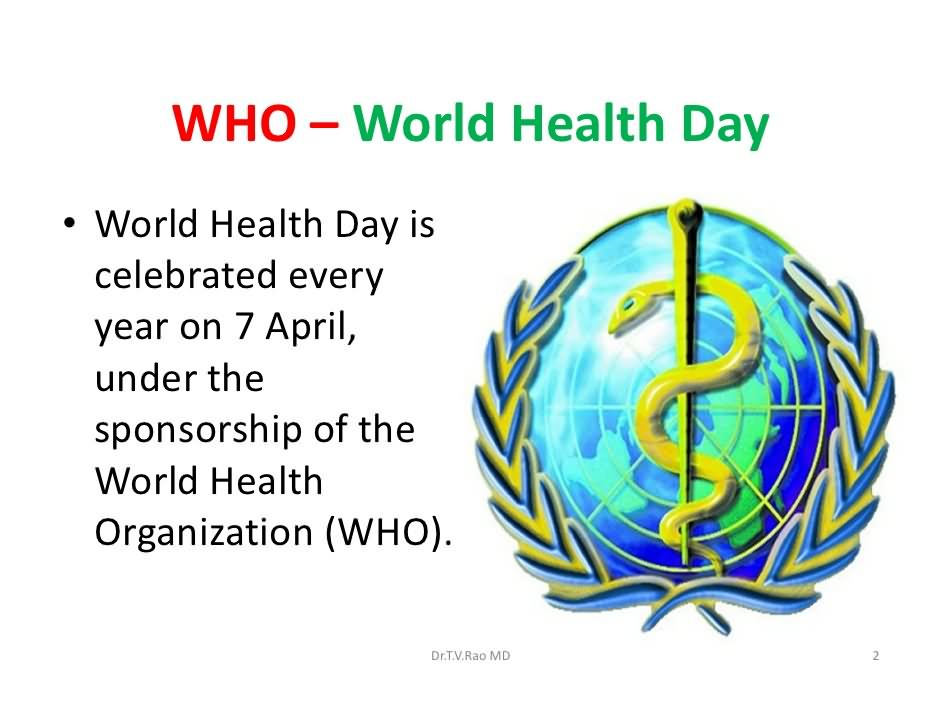 the world health organisation essay