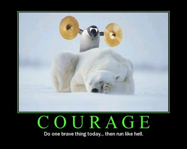 Funny Motivational Quotes Unique Do One Brave Thing Then Run Like Hell Funny Inspirational Picture