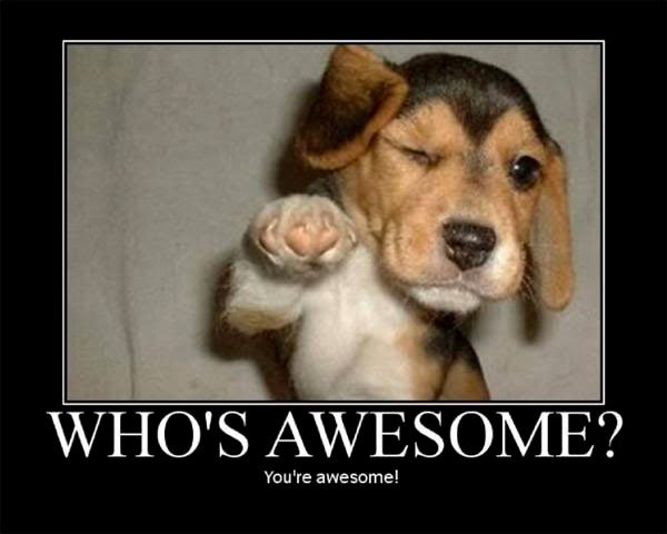 dog say you are awesome funny inspirational image