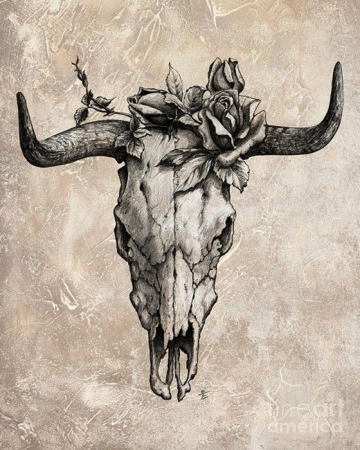 18 cow skull tattoo designs rh askideas com bull skull tattoos meaning bull skull tattoo pinterest
