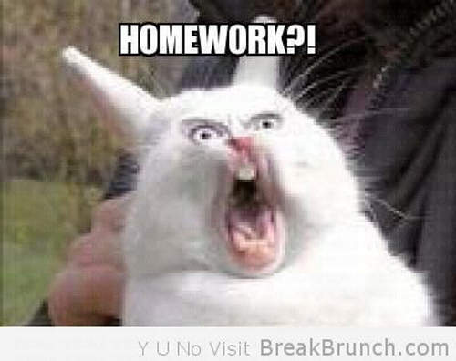 Angry Buy Homework Funny Picture