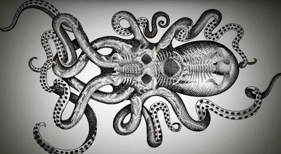 21+ Kraken Sleeve Tattoos