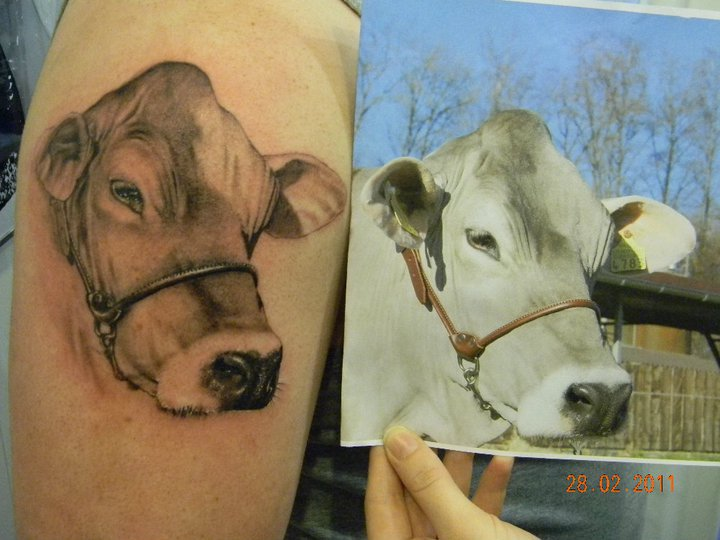 5d1ae8ea2 Black And Grey Cow Head Tattoo Design For Shoulder