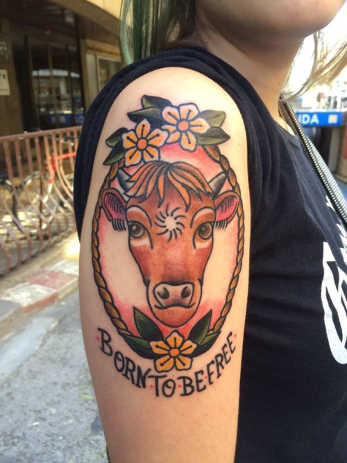 0a683e4b2 Born To Be Free – Traditional Cow Head In Frame Tattoo On Girl Right  Shoulder
