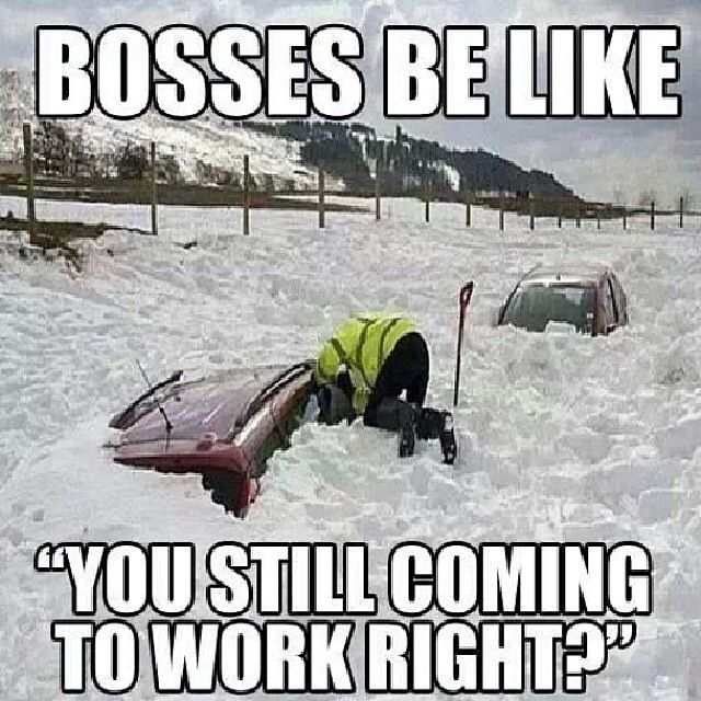 Boss Be Like You Still Coming To Work Right Funny Image