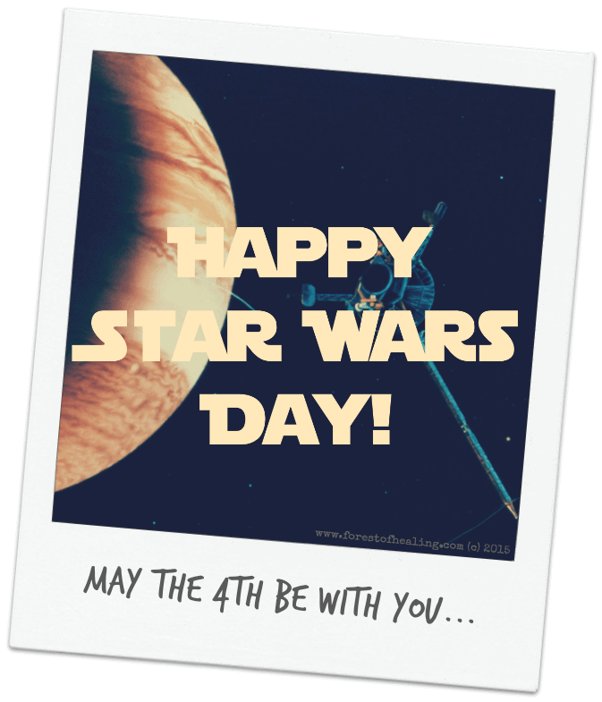 May The 4th Be With You Save The Date: 30 Best Star War Day Greeting Pictures And Photos