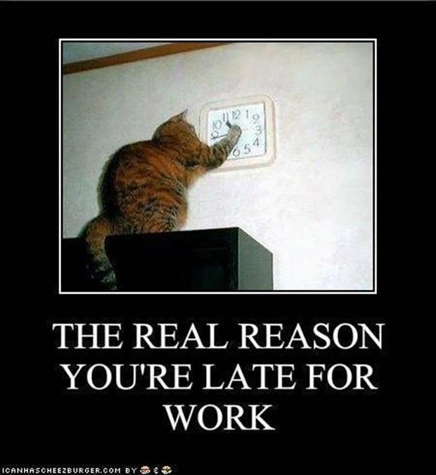 Funny Late For Work Meme : Very funny work pictures and images