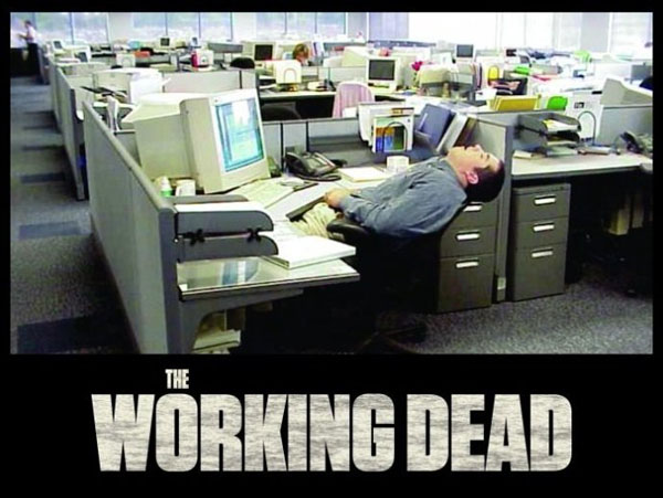 50 very funny work pictures and images