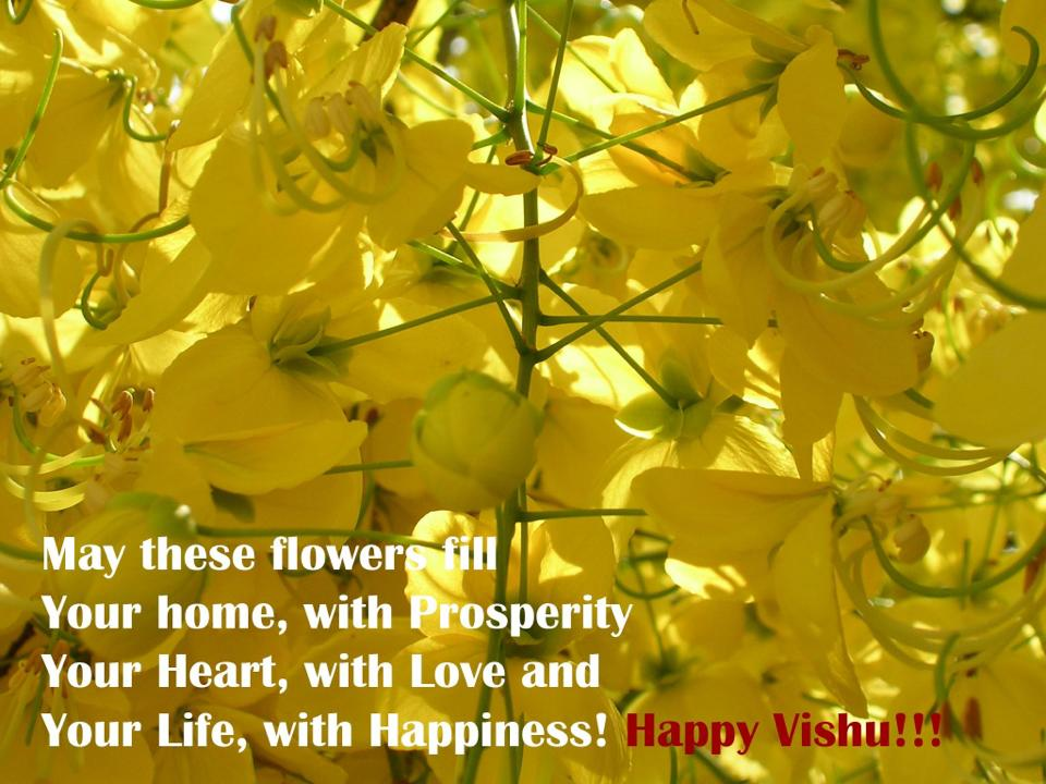 35 very beautiful vishu greeting pictures and photos may these flowers fill your home with prosperity your heart with love and your life m4hsunfo