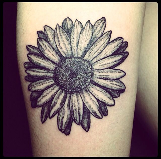 3aed481ef72d1 Black Daisy Flower Tattoo Design For Shoulder