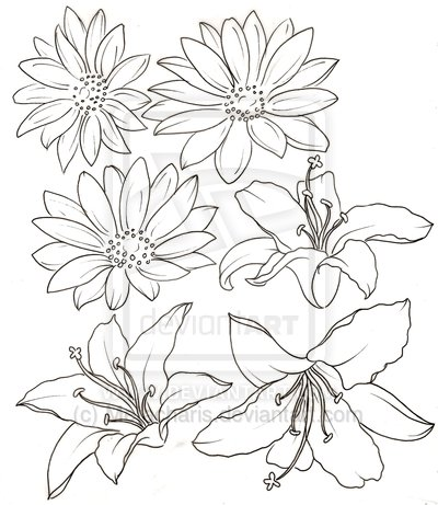 25 Outline Daisy Tattoos