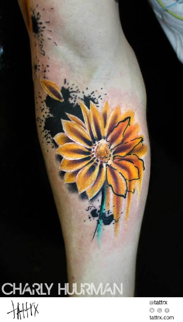 the gallery for gt watercolor gerber daisy tattoo