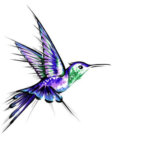 Image Gallery hummingbird tattoos designs