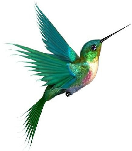 38+ Hummingbird Tattoo Designs And Ideas