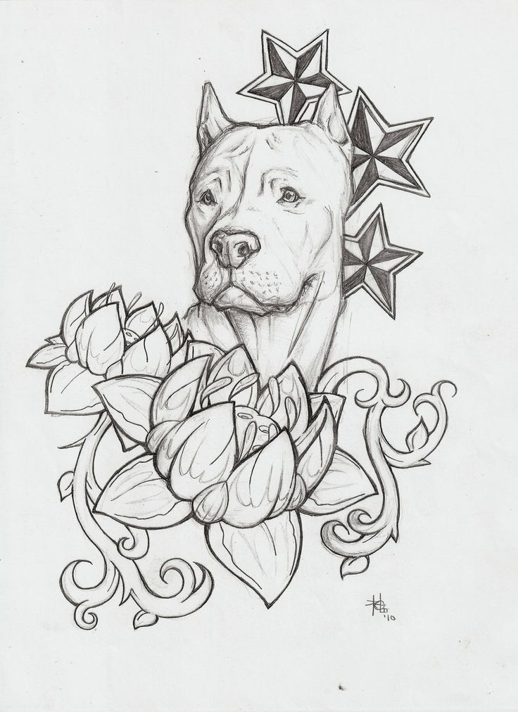 18 Latest Dog Tattoo Designs