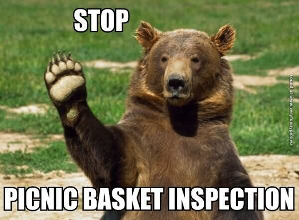 Yogi Bear Quotes Picnic Basket: O God Help Me I Dropped The Soap Funny Animal Meme Picture