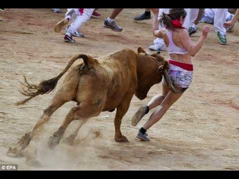 Cow On Girl Funny Fail Picture