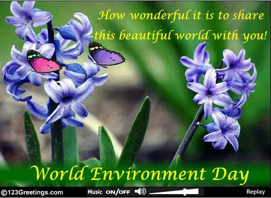 essay on environment day celebration Let's discover the history of the most important day for encouraging worldwide  awareness and action for the protection of our environment.