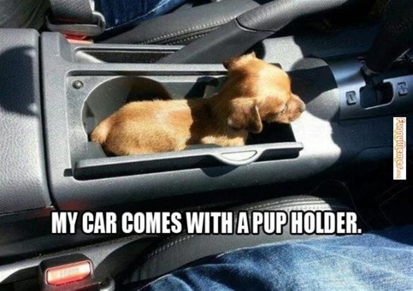 New Car Meme Funny : 30 most funniest car meme pictures and photos