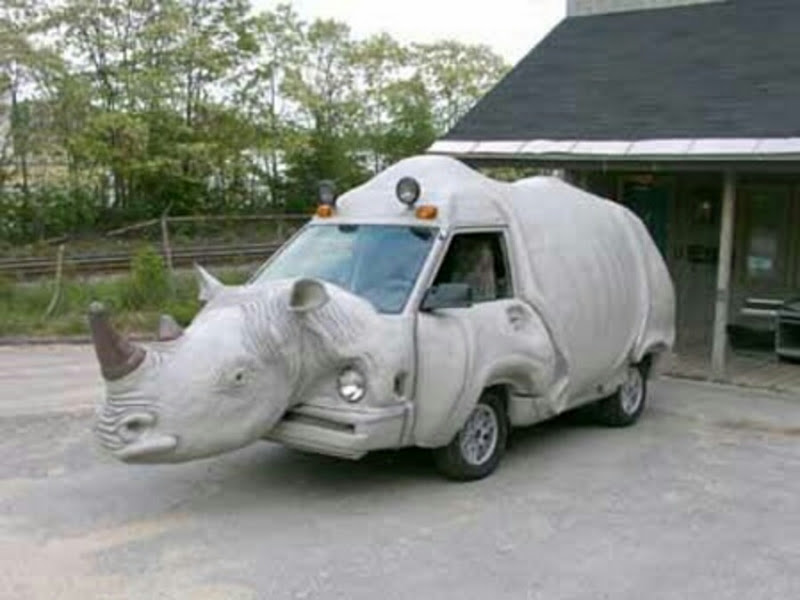 Rhinoceros Shape Funny Looking Image