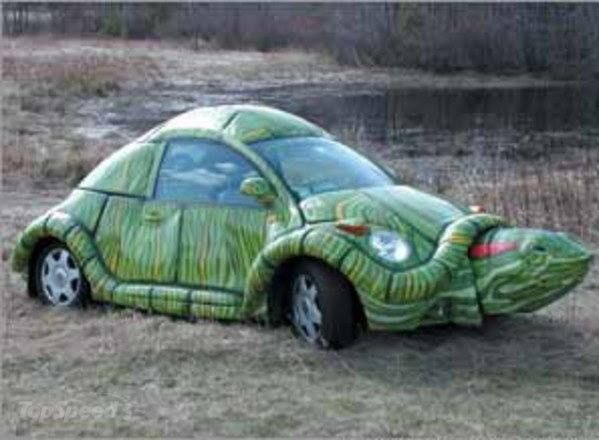 Turtle Shape Funny Looking Car Picture