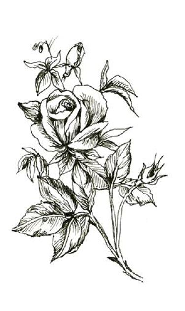 15 black and white floral tattoo designs amazing black and white floral tattoo design mightylinksfo