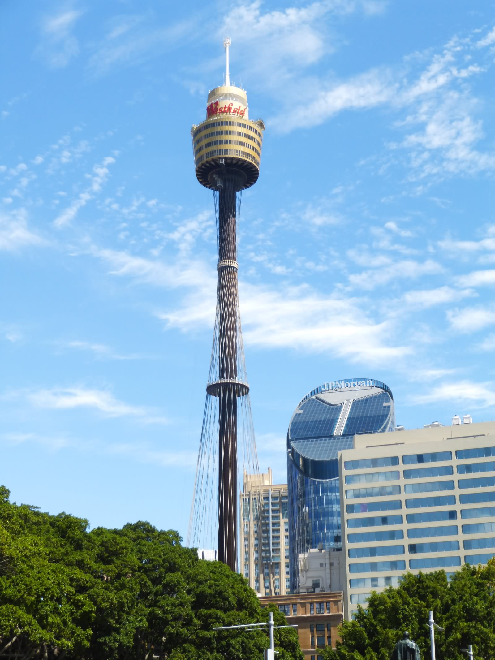 Beautiful Picture Of Sydney Tower