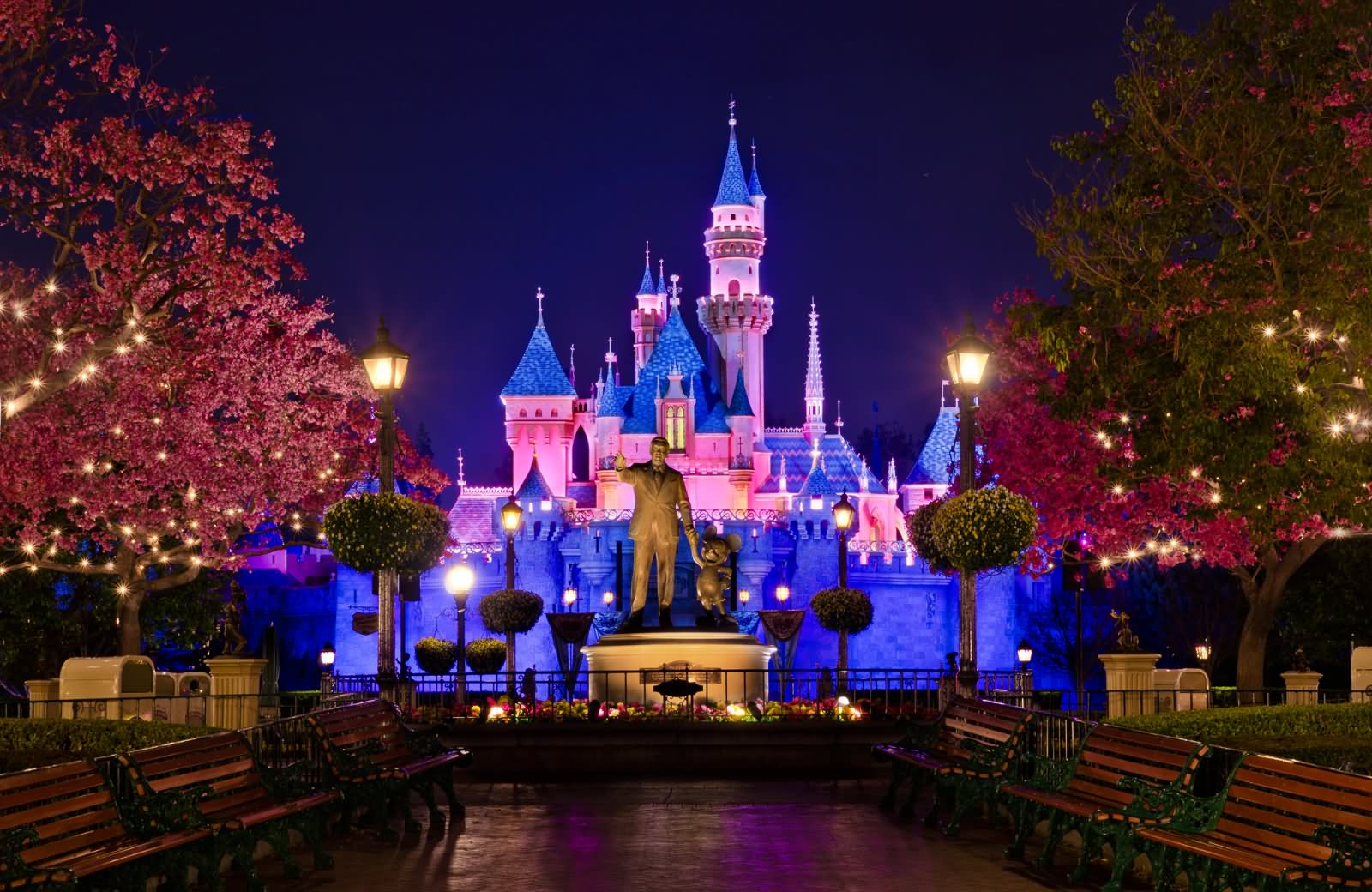 20 Incredible Disneyland Paris Night Pictures And Images