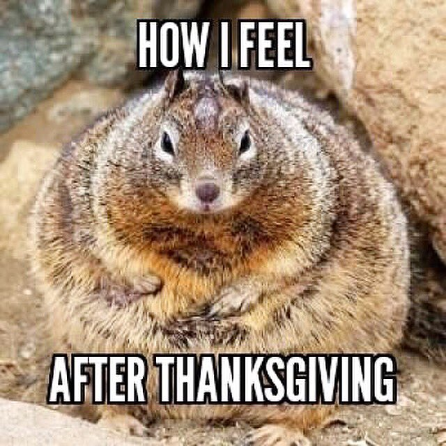 Funny How I Feel After Thanksgiving Meme Image