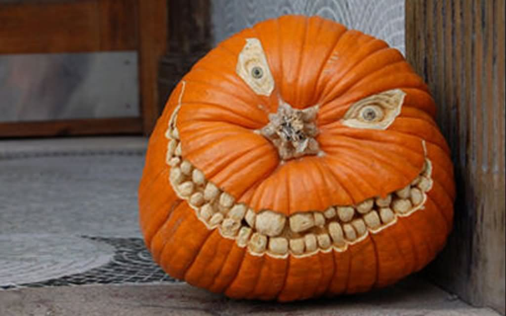 Most funny halloween pumpkin pictures and photos