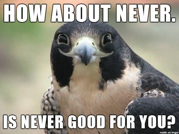Avant gout Battle for Azeroth How-About-Never-Is-Never-Good-For-You-Funny-Bird-Meme-Picture