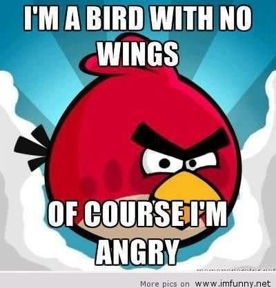 I Am Bird With No Wings Funny Bird Meme Picture