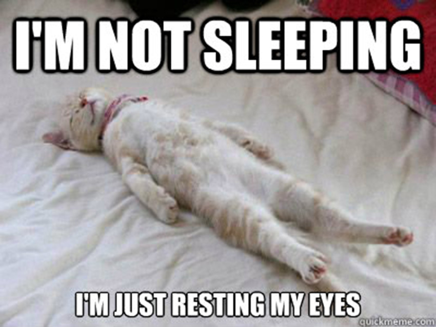 I Am Not Sleeping I Am Just Resting My Eyes Funny Meme Photo For Whatsapp