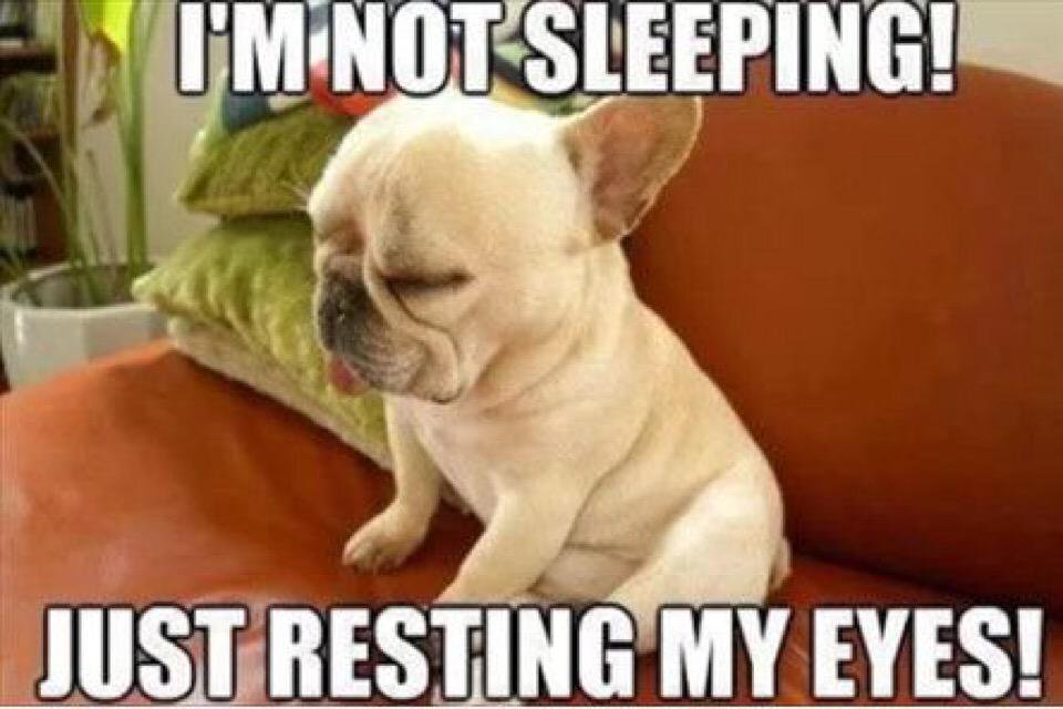 I Am Not Sleeping Just Resting My Eyes Funny Meme Image