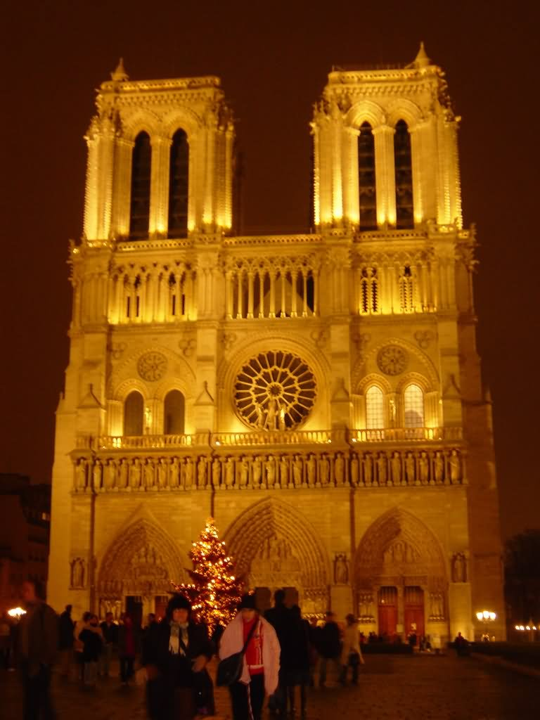 notre dame cathedral essays Notre dame cathedral early gothic style in 12503, one of the most recognized  cathedrals of its time period in the world made mostly of cut stone this.