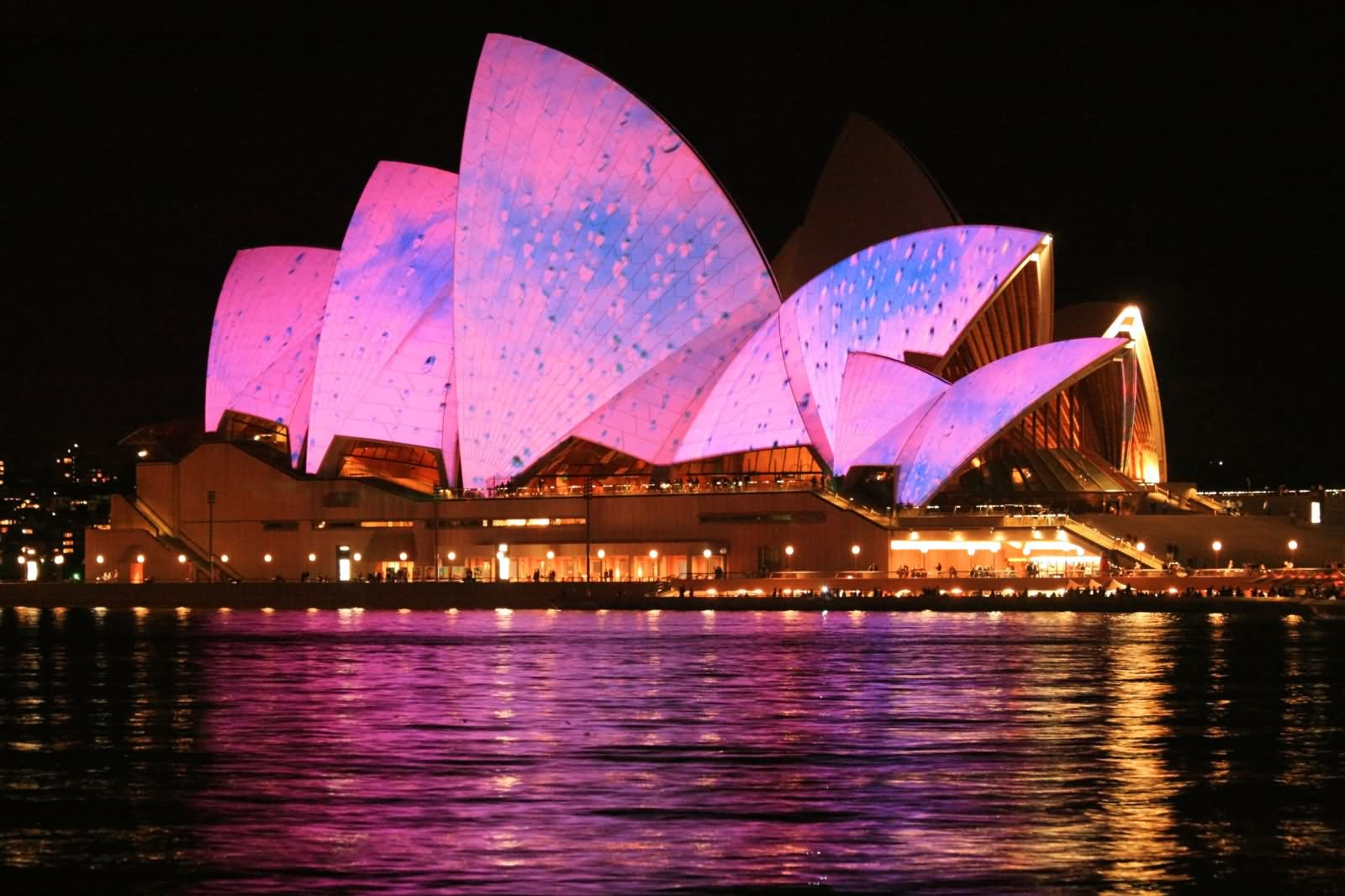 Pink Light Decoration At Sydney Opera House Night Picture - Get Free Photos Of Sydney Opera House  Pictures