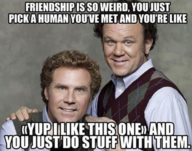 Funny Meme For Friends : Very funny insult meme pictures and photos