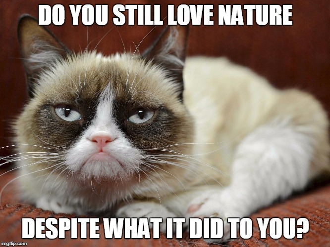 nature valentines day memes - e Back Here And Let Me Love You Funny Love Meme Image
