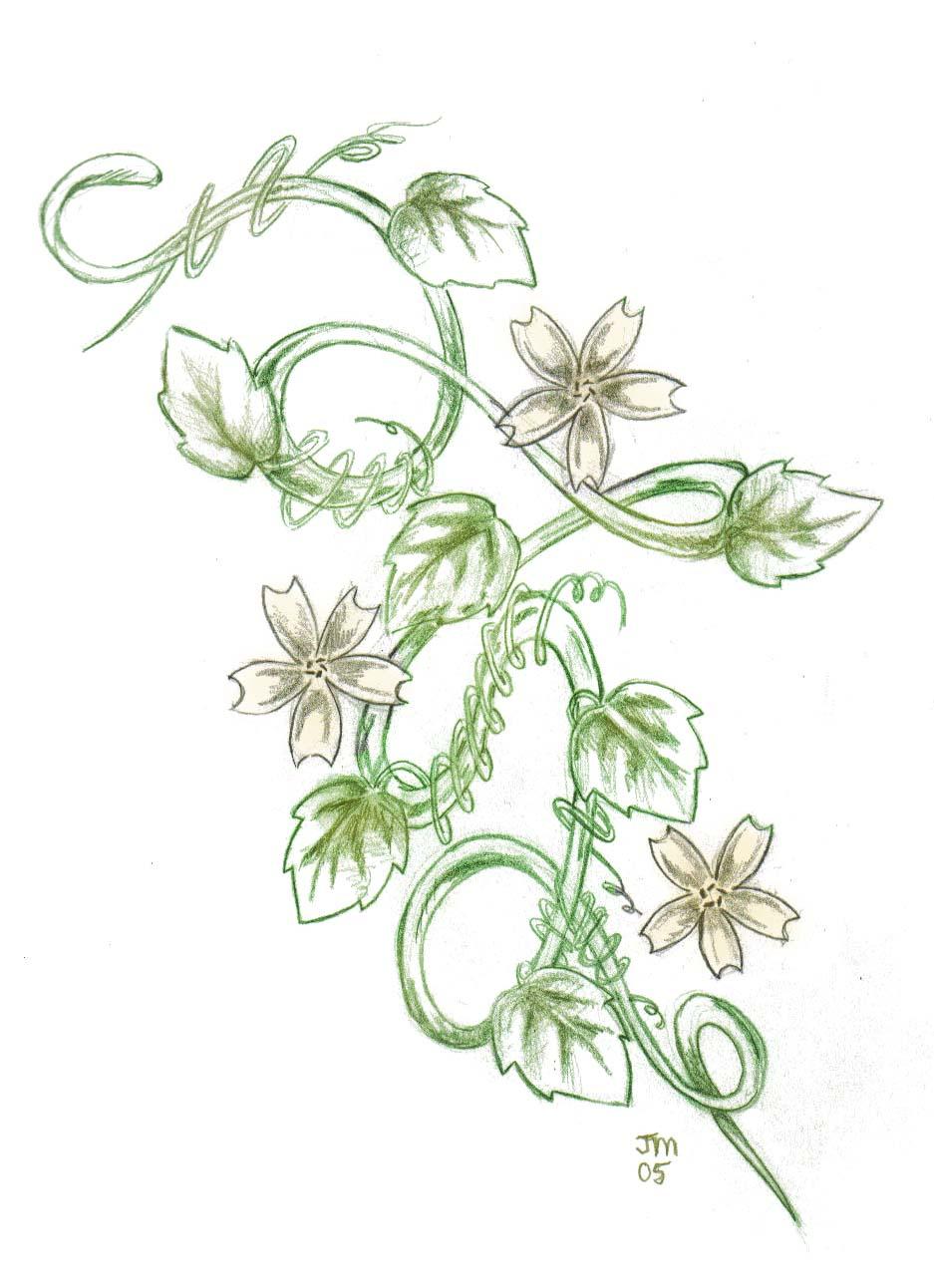 green ink vine flowers tattoo design by jesse. Black Bedroom Furniture Sets. Home Design Ideas