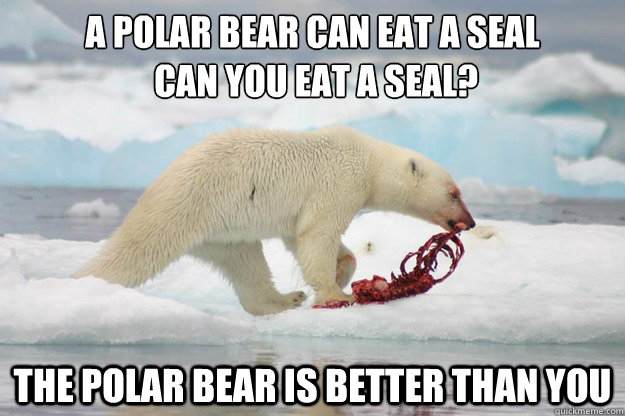 A Polar Bear Can Eat A Seal Can You Eat A Seal Funny Bear Meme Picture