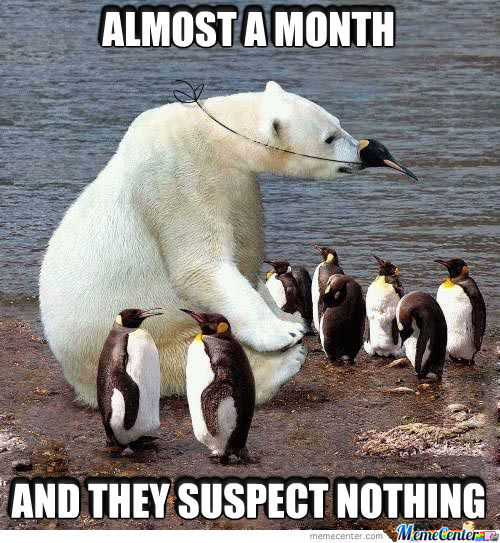Almost A Month And They Suspect Nothing Funny Bear Meme Photo 35 most funniest bear meme pictures and photos,Meme Bear