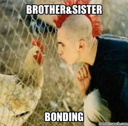 Brother Sister Bonding Funny Chicken Meme Picture